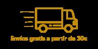 truck icon color p4
